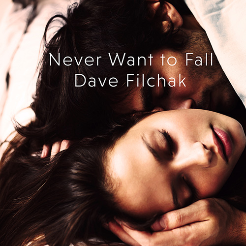 Never Want to Fall Cover